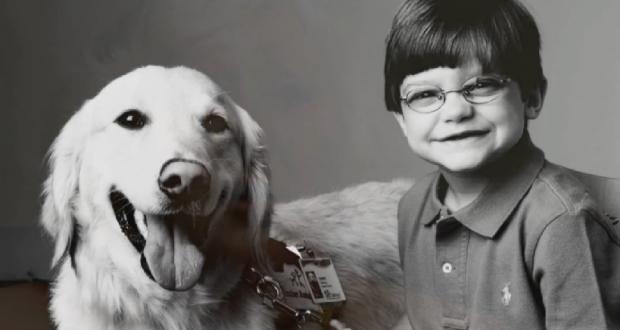 Speciális kötelék egy haldokló fiú és egy kutya között