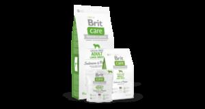 Betegségek megelőzése a Brit Care kutyatáp fogyasztásával